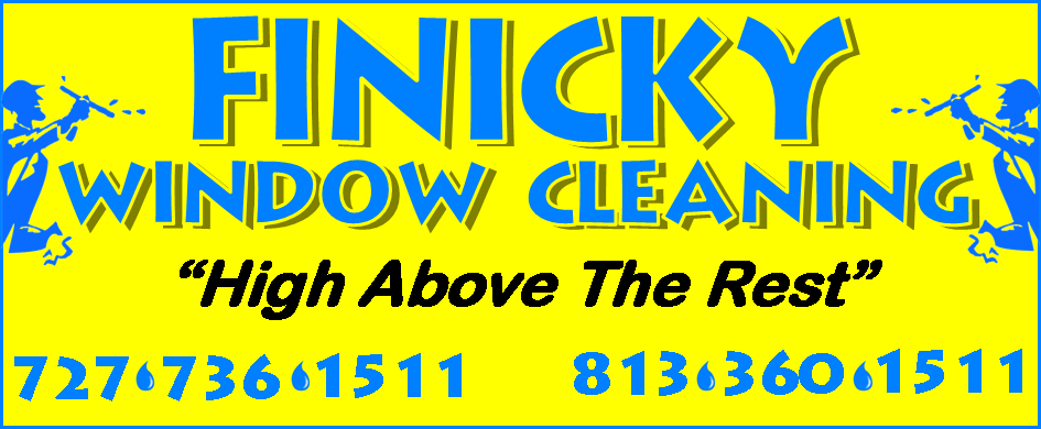 Finicky Window Cleaning